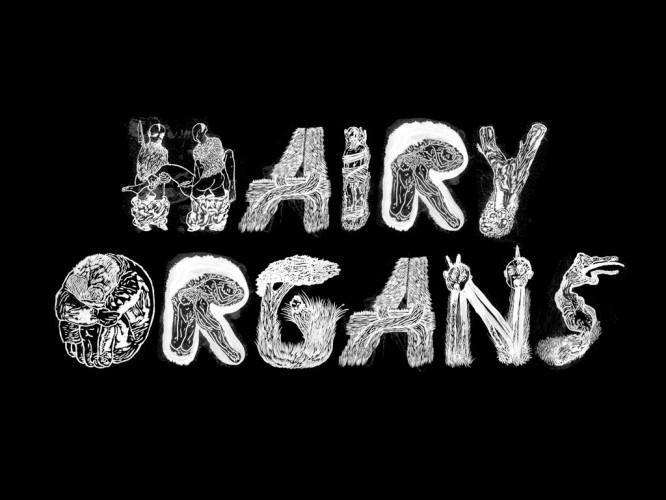 hairy_hairyorgans